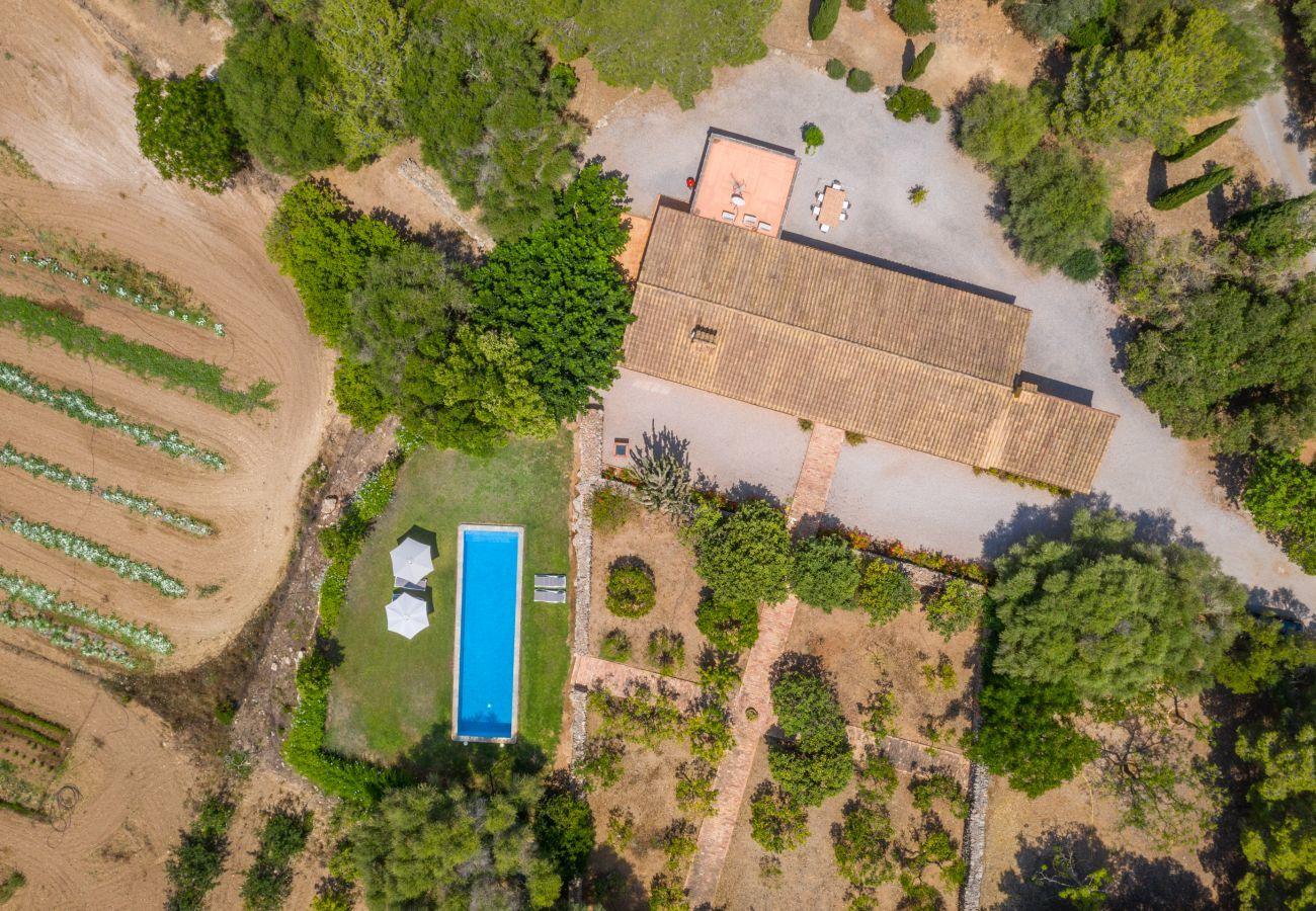 Cottage in Manacor - Ses Cases Son Blat